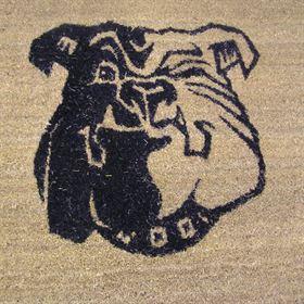 Logo entrance mats